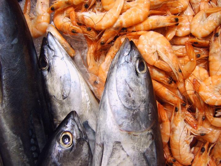 fisch-benalmadena